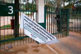 Vista do Parque do Carmo, na zona leste de São Paulo (SP) que amanheceu fechado para o público nesta quinta feira (22). A medida foi adotada pela Secretaria do Verde e Meio Ambiente da Prefeitura de São Paulo após a confirmação da morte de um macaco por febre amarela no local. © BW PRESS COPYING OR REPRODUCTION PROHIBITED. AVISO: Imagens protegidas pela lei do direito autoral 9.610/98. É proibido o uso ou cópia sem permissão do autor. Sujeito às penalidades legais.