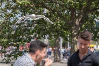 Movimentação no centro de Dublin, Irlanda, nesta quinta feira (14). © bw press COPYING OR REPRODUCTION PROHIBITED. AVISO: Imagens protegidas pela lei do direito autoral 9.610/98. É proibido o uso ou cópia sem permissão do autor. Sujeito às penalidades legais