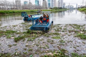 O governo de São Paulo iniciou, nesta quarta-feira (5), testes com dois barcos coletores de resíduos flutuantes, conhecidos como Ecoboats, para auxiliar na limpeza do rio Pinheiros. Paulo Lopes @BWPressFoto COPYING OR REPRODUCTION PROHIBITED. Proibido o uso ou cópia sem permissão do autor. #rio #pinheiros #poluição #meioambiente #natureza #sujeira #inseto #mosquito #lixo #esgoto #água #peixe #ecosistema #marginal #pneu #sofá #alga #bactéria